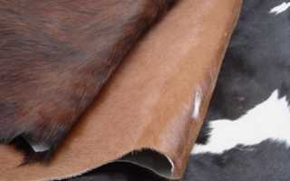Шкура КРС: преимущества использования, основные разновидности, правила выделки коровьих шкур