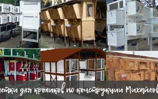 Клетки для кроликов по конструкции Михайлова: пошаговый процесс строительства, выбор материалов