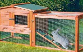 Вольер для кроликов – делаем своими руками