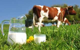 Что влияет на молочную продуктивность коров: кормление и содержание, возраст животных, состояние здоровья