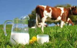 Как определяется норма плотности коровьего молока: способы увеличения этого показателя
