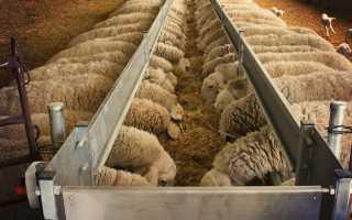 Кормушка для овец: основное назначение, разновидности конструкций, пошаговый процесс строительства