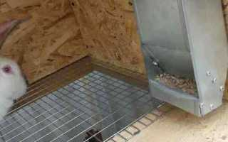Бункерная кормушка для кроликов – как сделать самостоятельно