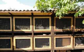 Шеды для кроликов: эффективный способ содержания питомцев