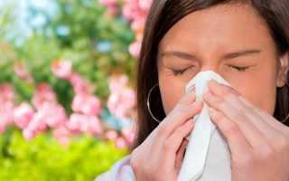 Аллергия на кролика – основные симптомы и способы лечения