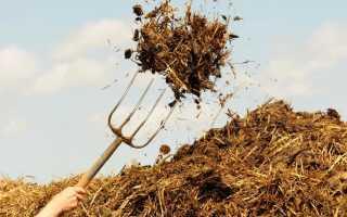 Полезные свойства коровьего навоза, правила использования для удобрения, преимущества и недостатки