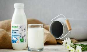 Можно ли кипятить козье молоко: правильная обработка продукта, особенности его хранения