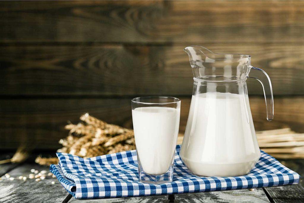 Жирность молока у коров казахской белоголовой породы до 4,8%