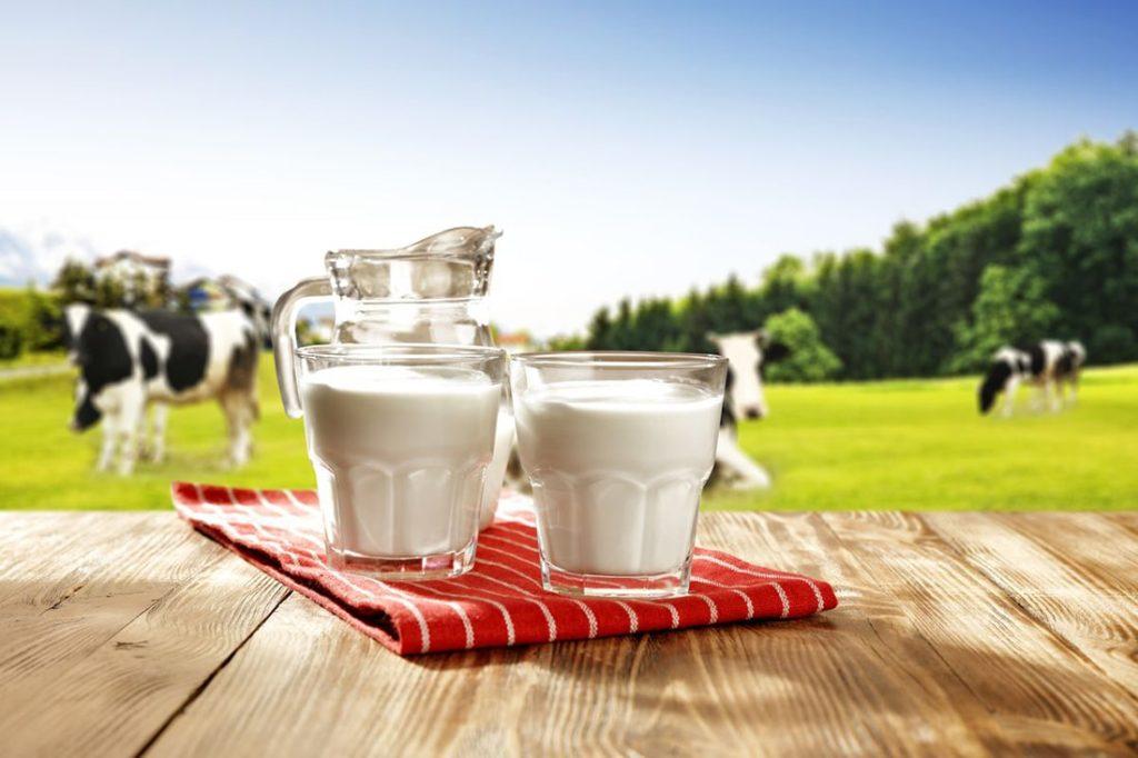 Показателем качества молока является жирность