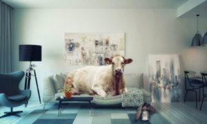 Научные исследования о сне коровы