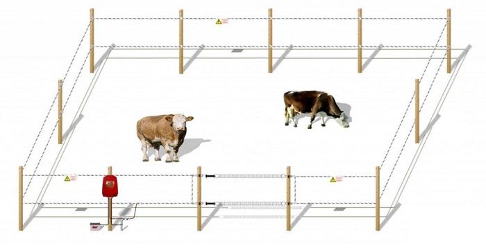 Схема работы электропастуха