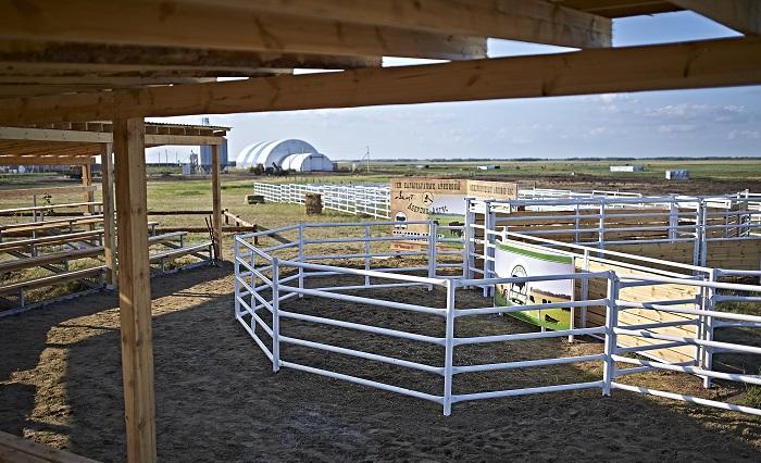 ограждения для коров