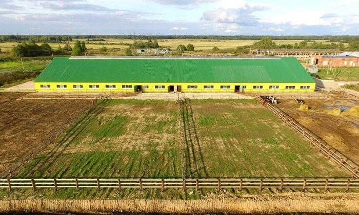 ферма в полях