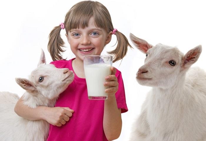 ребенок и козлята
