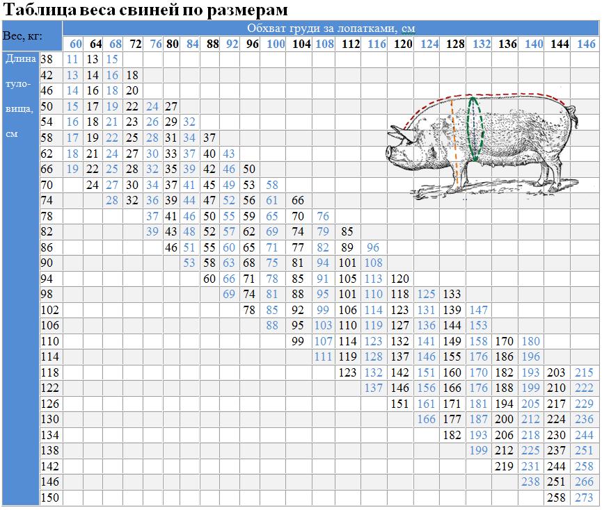 Таблица измерения веса