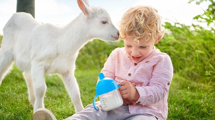 ребенок, коза и молоко