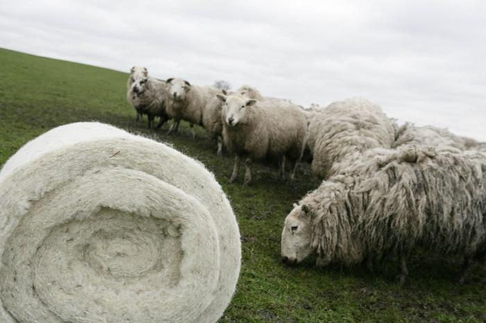 катушка овечье шерсти
