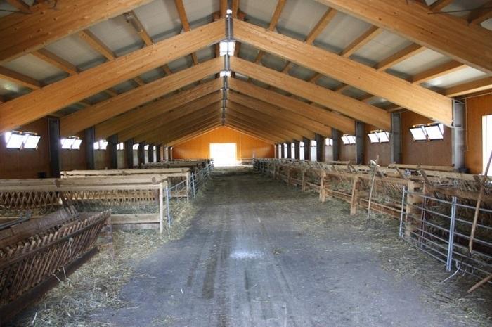 пустое помещение для овец
