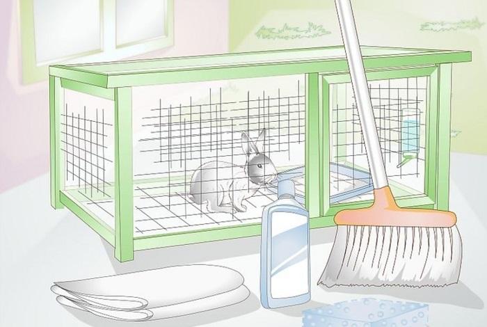 чистка клетки кролика