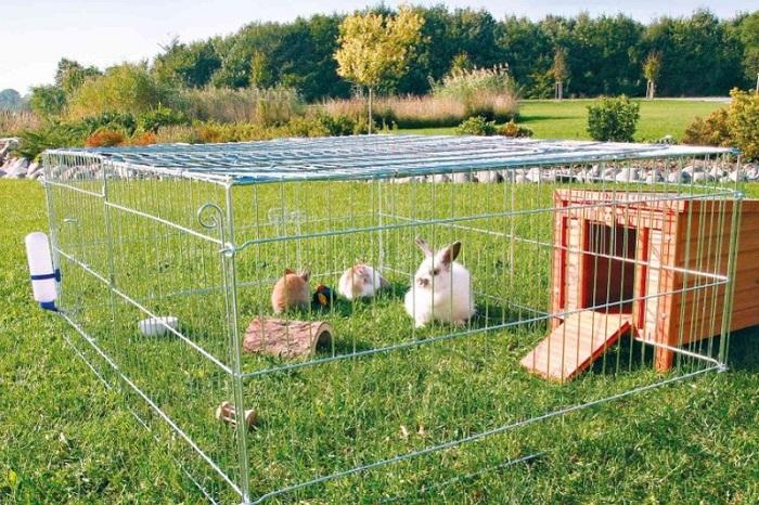 Клетки и загоны для кроликов