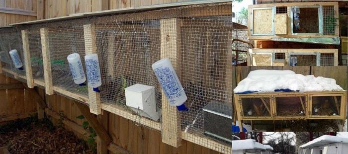Кролики зимой в клетках на улице