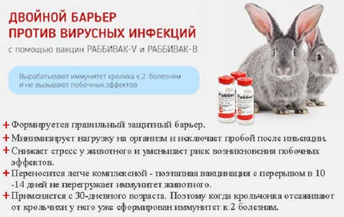 """Против ВГБК используют """"Раббивак-V"""""""