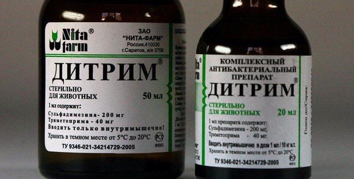 дитрим