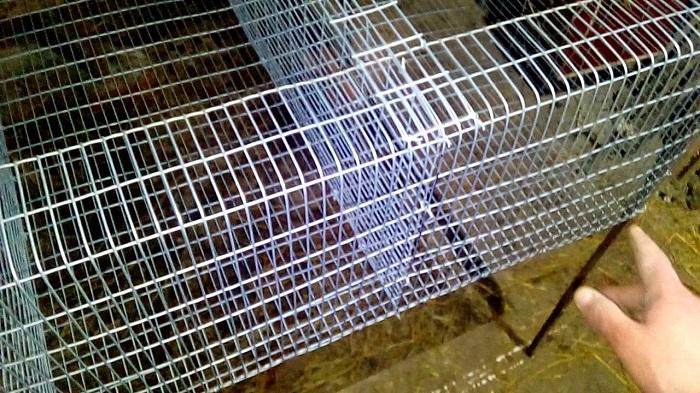 Клетки для кроликов из сетки