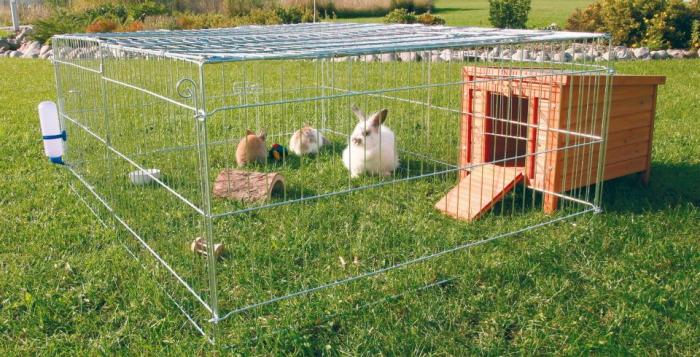 кролики в сетке