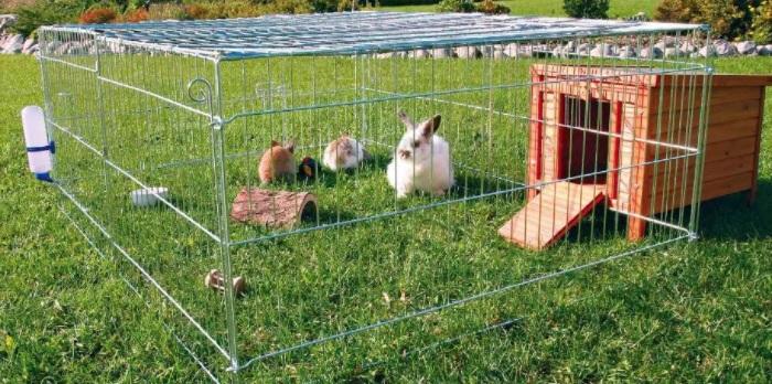 вольер для кролика
