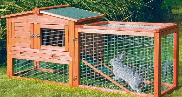 кролик в вольере